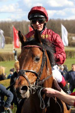 Rogue Runner mit Andrea Atzeni nach dem Sieg am Ostersonntag in Hoppegarten. www.galoppfoto.de - Frank Sorge