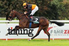 Dolcetto debütiert erfolgreich im Stil eines besseren Pferdes. www.galoppfoto.de - Stephanie Gruttmann