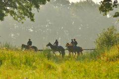 Nachschau Avenches 30. Juli 2014