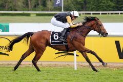 Marshmallow kommt unter dem Champion zu ihrem fünften Karrieretreffer. www.galoppfoto.de - Sabine Brose