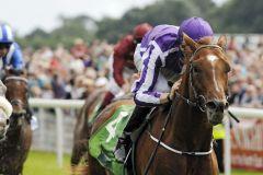 Leichte Sieger in den Juddmonte International Stakes: Australia und Joseph O'Brien. Foto:  www.galoppfoto.de - John James Clark