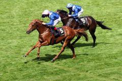 Ein Hamdan Al Maktoum-Doppel in den Jersey Stakes durch den Sieger Mustajeeb und den Zweiten Muwaary. Foto: www.galoppfoto.de - Frank Sorge