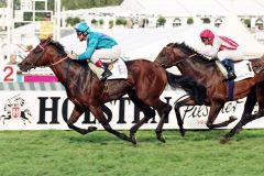 Areion siegt 2000 mit Andrasch Starke in der Holsten-Trophy - Gr. III. www.galoppfoto.de