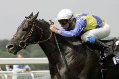 Manduro - das weltbeste Pferd des Jahres 2007. www.galoppfoto.de