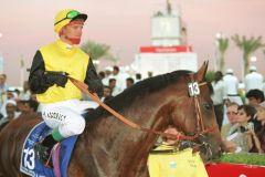 Silvano mit Andreas Suborics in Dubai. Foto: www.galoppfoto.de