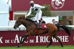 Altano Prix du Cadran 2013-10-06  Foto: Dr. J. Fuchs