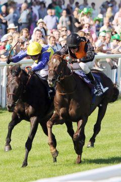 Amaron (rechts) mit Andrasch Starke gewinnt die Badener Meile. www.galoppfoto.de - Sarah Bauer