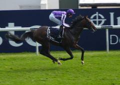 Camelot beim Investec Derby in Epsom. Foto: Heidrun Küster
