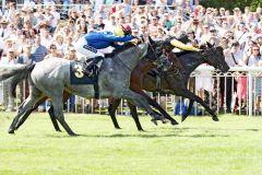 Das Finish im Sprint: Celebrity kommt knapp hin. www.galoppfoto.de - Sabine Brose