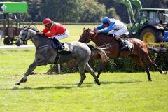 Zweiter Sieg in Folge für Densy. www.galoppfoto.de - Sabine Brose