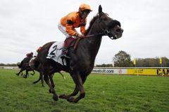 Dritter Sieg für Timorow (Alexander Pietsch) - erstmals wurde auch bei der Besitzerprämie mitverdient. www.galoppfoto.de - Sabine Brose