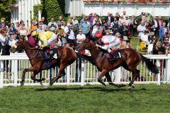 Manolas gewinnt unter Andrasch Starke in gutem Stil. www.galoppfoto.de