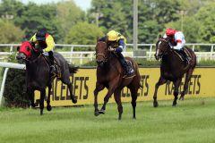 Beim dritten Mal klapp es: Pleasant Company kommt zu ihrem ersten Sieg. www.galoppfoto.de - Stephanie Gruttmann