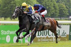 Ein Pferd mit Potenzial nach oben: Der Novellist-Sohn Praetorius. www.galoppfoto.de - Stephanie Gruttmann