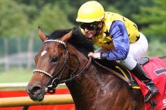 Protectionist gewinnt mit Jozef Bojko, der den Monsun-Sohn jetzt auch in Hamburg reiten wird, im swb Derby-Trial. www.pferde-gtm.de