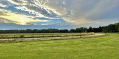 Nachschau Hoppegarten 18. Juli 2021