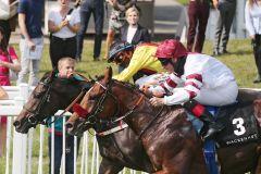 Knapp wars: Reine d'amour (hinten) gewinnt mit Nase-Vorsprung das Zukunfts-Rennen gegen Juanito. www.galoppfoto.de