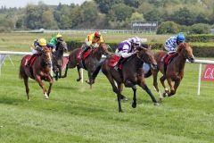 Ein Pferd mit Zukunft: Sea of Sands kommt beim zweiten Start zum ersten Sieg. www.galoppfoto.de - Sabine Brose