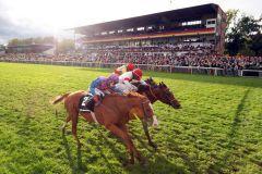 So knapp ging es zu, gewonnen wird innen - Itobo (Marco Casamento) vor Laccario (Mitte) und Be My Sheriff. www.galoppfoto.de