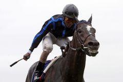 Stürmen zum ersten Gruppe-Sieg (nach fünf Platzierungen) - Empire Storm und Eduardo Pedroza. www.galoppfoto.de - Frank Sorge