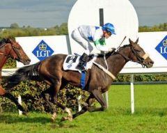 Earlsalsa gewinnt den Grand Prix in Dielsdorf. Foto: Ueli Wild, www.horseracing.ch