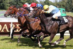 Vier Pferde (fast)  in einer Linie, aber Otto, der zweite von links, streckt seinen Kopf in Front, der Siegreiter heißt wieder einmal Bauyrzhan Murzabayev. www.galoppfoto.de - Sabine Brose