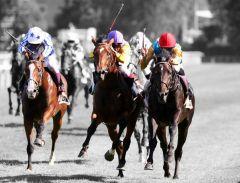 Die Top-3 Derby-Helden (v.r.n.l.): Der Sieger Weltstar (Adrie de Vries), der Zweite Destino (Martin Seidl), der Dritte Royal Youmzain (Eduardo Pedroza). Foto: Dr. Jens Fuchs