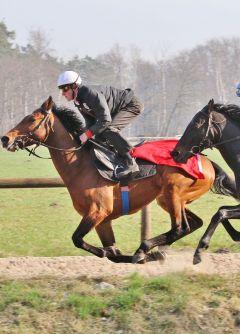 Altano mit Scalo (re) März 2012  Foto: www.Rennstall-Woehler.de