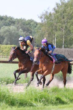 Andolini (li.) und Palm Danon (re.) Juli 2011  Foto: www.Rennstall-Woehler.de