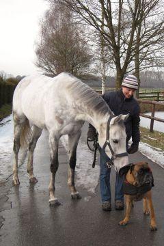 Simonas und Eros Februar 2010  Foto: www.Rennstall-Woehler.de