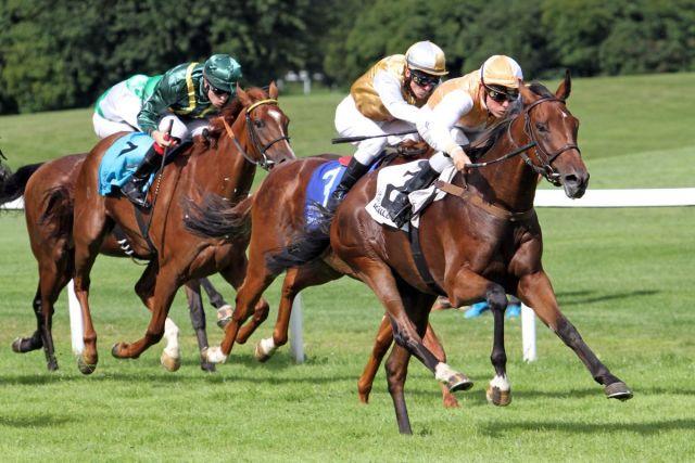 pferderennen frankreich ergebnisse