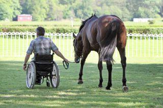 Quo vadis? Wenn es nach Christian Zschache geht, darf es ruhig so weitergehen. Foto: www.galoppfoto.de - Sabine Brose