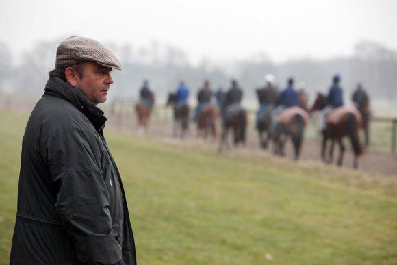 Über 100 Pferde sind bei Andreas Wöhler im Training