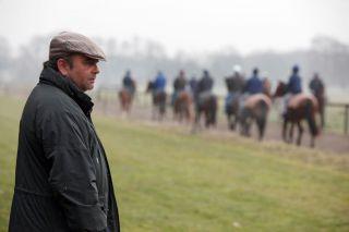 An die 100 Pferde sind bei Andreas Wöhler im Training