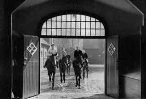 8 - Das Stutenlot auf dem Weg zurück in den Hallenstall rechts vorne Windstille - aus Album 52