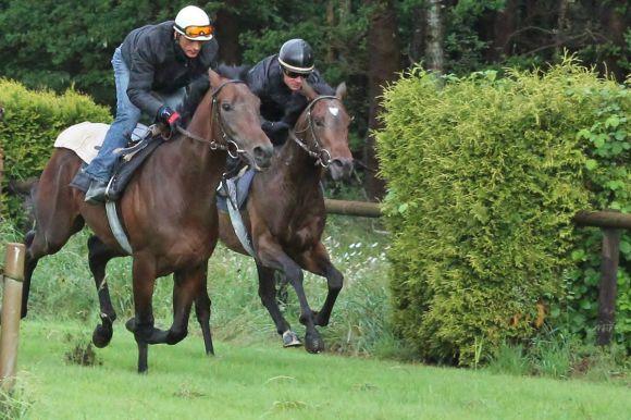 Cabanello (li) und Monsieur de Frappe 2012 Juni