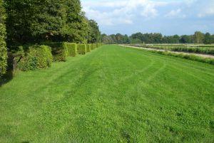 Die Gras- und Sandbahn