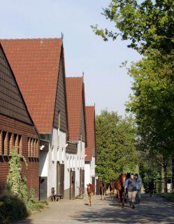 Die Stallanlage im Gestüt Auenquelle. www.galoppfoto.de