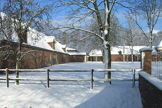 Winter in Ravensberg Januar 2010.