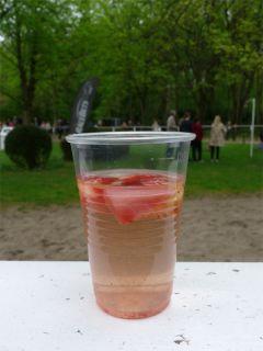 Auch wenn noch keine Erdbeerzeit war, die Bowle mundete bereits. Foto: Karina Strübbe