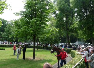 Bester Blick von nahezu überall hat der Besucher auf den Krefelder Führring. Foto: Karina Strübbe
