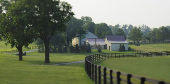 Das Stonereath Stud der Familie Berglar in den USA. www.stonereath.com