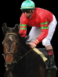 Natürlich Il Divo .... rot, grün-rot-grüne Armbinden, grüne Kappe - das sind die Farben des Rennstalles Wöhler.