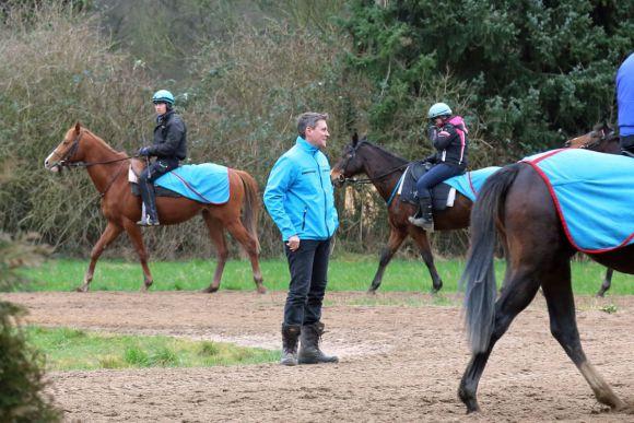 Morgenarbeit in Röttgen: Trainer Markus Klug hat derzeit 70 Pferde in seiner Obhut. www.galoppfoto.de - Sabine Brose